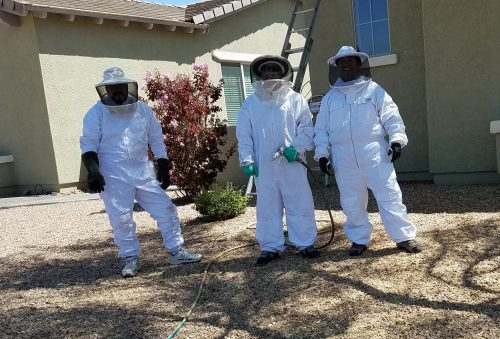 locally owned and operated Tucson Pest Control